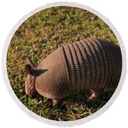 Busy Armadillo Round Beach Towel