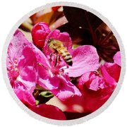 Busy As A Bee 031015 Round Beach Towel