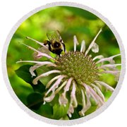 Busy As A Bee Round Beach Towel by Valeria Donaldson