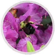 Busy Bee Collecting Pollen On Rhododendron  Round Beach Towel