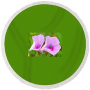 Busy Bug 2 Round Beach Towel