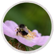 Busy Bumble Round Beach Towel