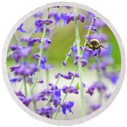 Busy In Lavender 3 Round Beach Towel