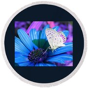 Busy Little Butterfly Round Beach Towel