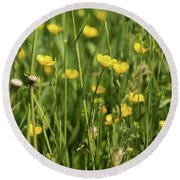 Buttercups And Green Grass At Moore State Park Round Beach Towel