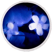 Buttercups In White Blue And Black Round Beach Towel