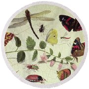Butterflies, Insects And Flowers Round Beach Towel