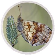 Butterfly - Meadow Satyrid Round Beach Towel