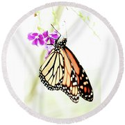 Butterfly 01 Round Beach Towel