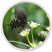 Butterfly 140 Round Beach Towel