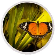 Butterfly 23 Round Beach Towel