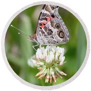 Butterfly And Bugs On Clover Round Beach Towel