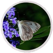 Butterfly And Flower Round Beach Towel