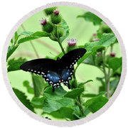 Butterfly And Mossy Pond Round Beach Towel