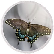 Butterfly At Picnic Round Beach Towel