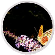 Butterfly Banquet 1 Round Beach Towel