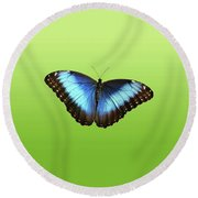 Butterfly Blue Morpho On Green Round Beach Towel