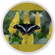 Butterfly Blue Striped Round Beach Towel