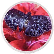 Butterfly Blues - Constable  Round Beach Towel
