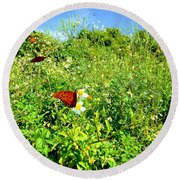 Butterfly Bonanza Round Beach Towel