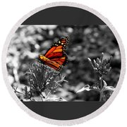 Butterfly Color On Black And White Round Beach Towel