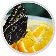 Butterfly Haven Citrus Round Beach Towel
