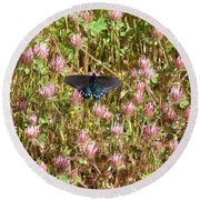 Butterfly In Clover Round Beach Towel