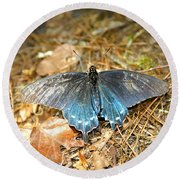 Butterfly In The Forest Round Beach Towel