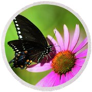 Butterfly In The Sun Round Beach Towel