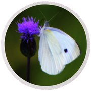 Butterfly In White Round Beach Towel