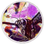 Butterfly Insect Eyes Probe  Round Beach Towel