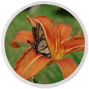Butterfly On A Blooming Orange Daylily Flower Blossom Round Beach Towel