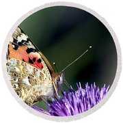 butterfly on a Silybum marianum I Round Beach Towel