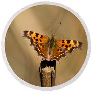 Butterfly On A Stick Round Beach Towel