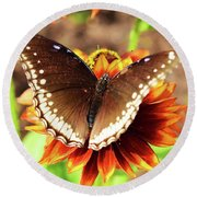Butterfly On A Sunset Round Beach Towel