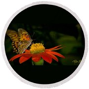 Butterfly On Blossom Round Beach Towel