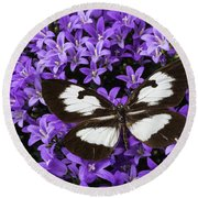 Butterfly On Campanula Get Mee Round Beach Towel