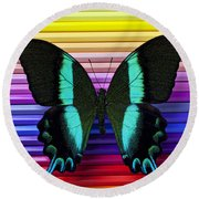 Butterfly On Colored Pencils Round Beach Towel
