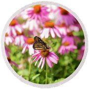 Butterfly On Flowers Round Beach Towel