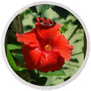 Butterfly On Hibiscus Round Beach Towel