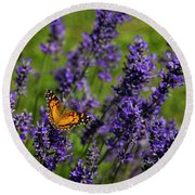 Butterfly On Lavender Round Beach Towel