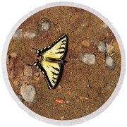 Butterfly On The Sand Two  Round Beach Towel