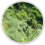 Butterfly On Thistle Round Beach Towel