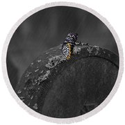 Butterfly On Tombstone Round Beach Towel