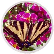 Swallowtail Butterfly Pink Round Beach Towel