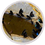 Butterfly Pool Round Beach Towel