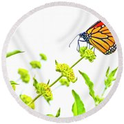 Butterfly Series #10 Round Beach Towel