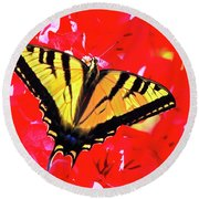 Butterfly Series #11 Round Beach Towel