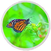 Butterfly Series #13 Round Beach Towel