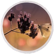 Butterfly Spirit #03 Round Beach Towel by Loriental Photography